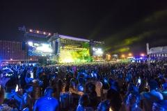 Paradise Music festival (1)